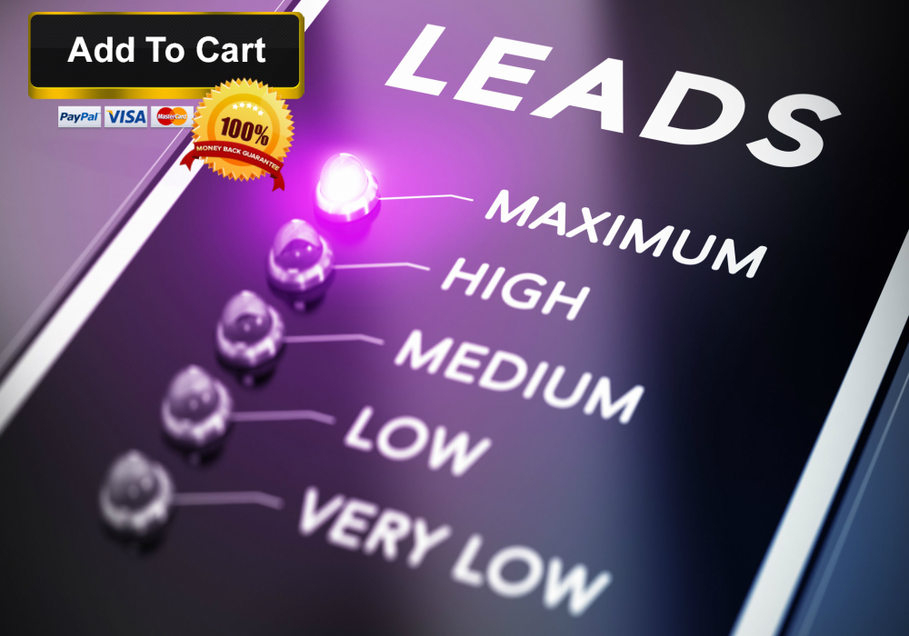 Business coach expert offers free lead generation system as part of b2b lead generation services training course.